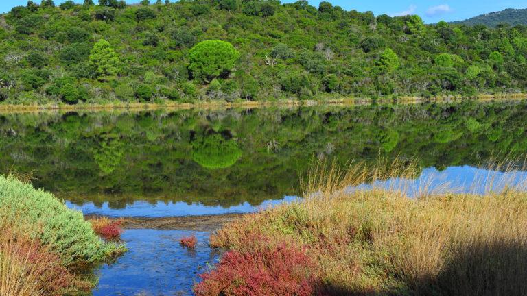 Réserve Naturelle Palombaggia